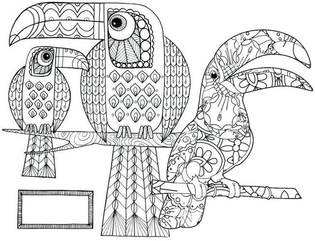 Toucan Mandala Coloring Page of Birds