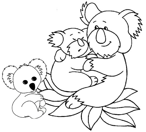 Koala Family Coloring Page of Koala and Babies