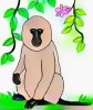 9 Sweet and Cute Baboon Coloring Pages for Children