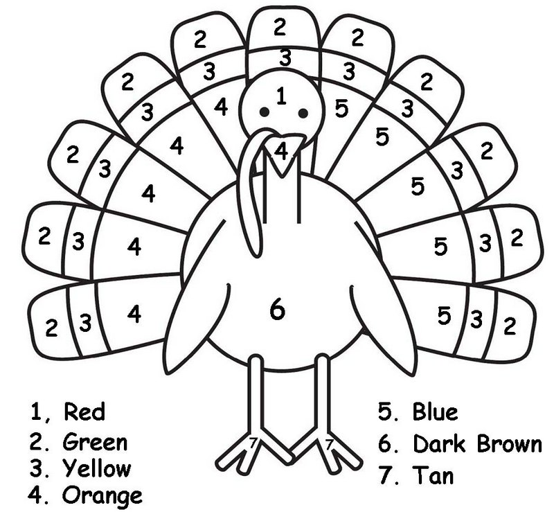 Beautiful Color By Number Thanksgiving Turkey