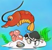 12 Cool and Cute Shrimp Coloring Pages for Kids