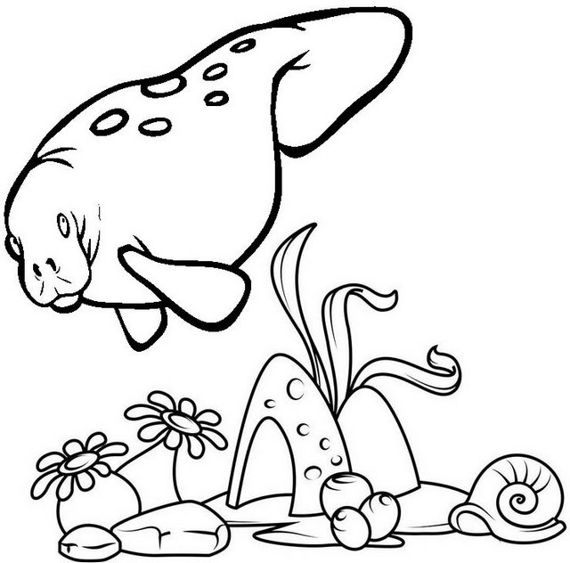 Seacow and coral reef coloring page