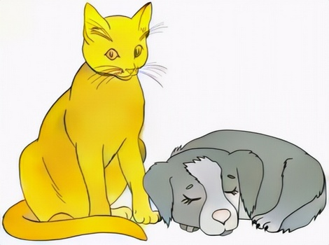 dog and cat coloring result