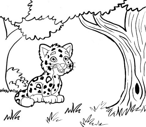 baby jaguar dora the explorer in forest coloring page