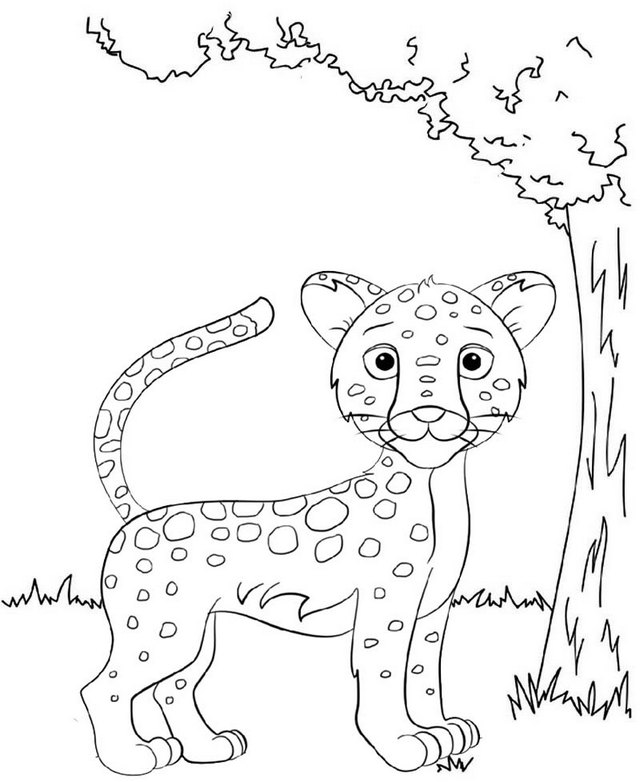 best baby jaguar coloring page online for kid