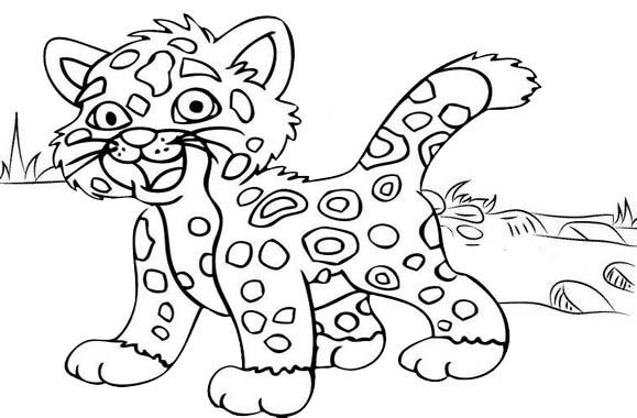 fun baby jagur coloring page