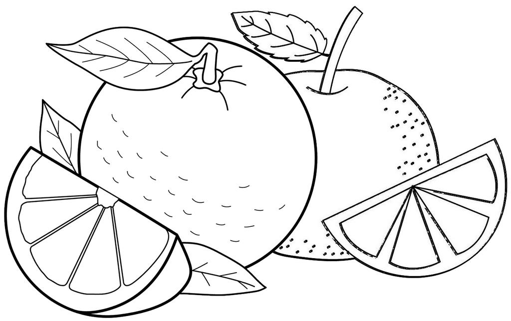 Sweet and Fresh Orange Fruit A Slice of Orange Fruit Coloring Page