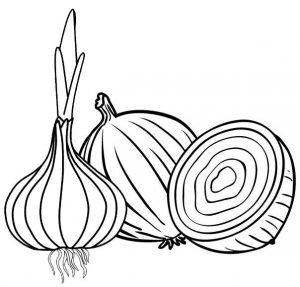 best onion for seasoning coloring page