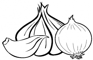 garlic and onion coloring page